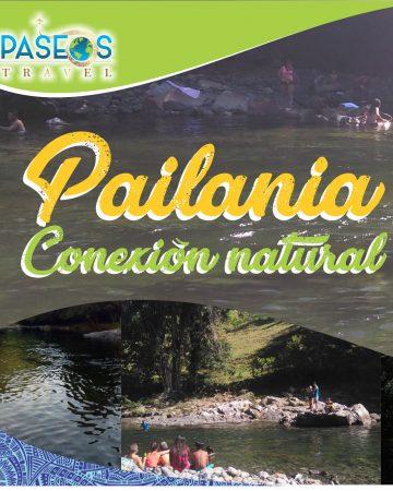 Painalia